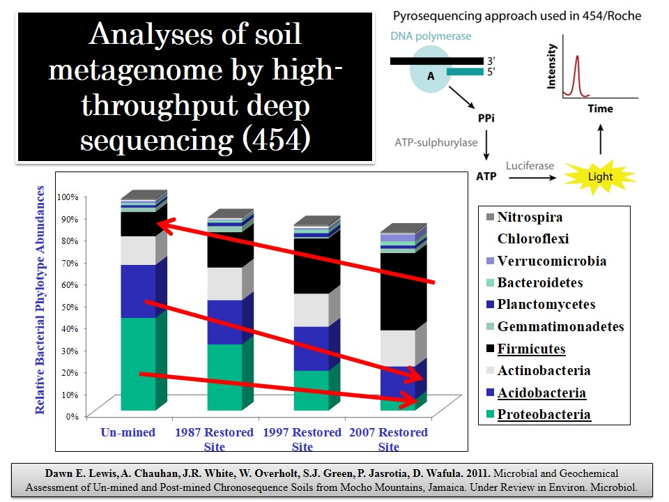 microbial analysis of soil